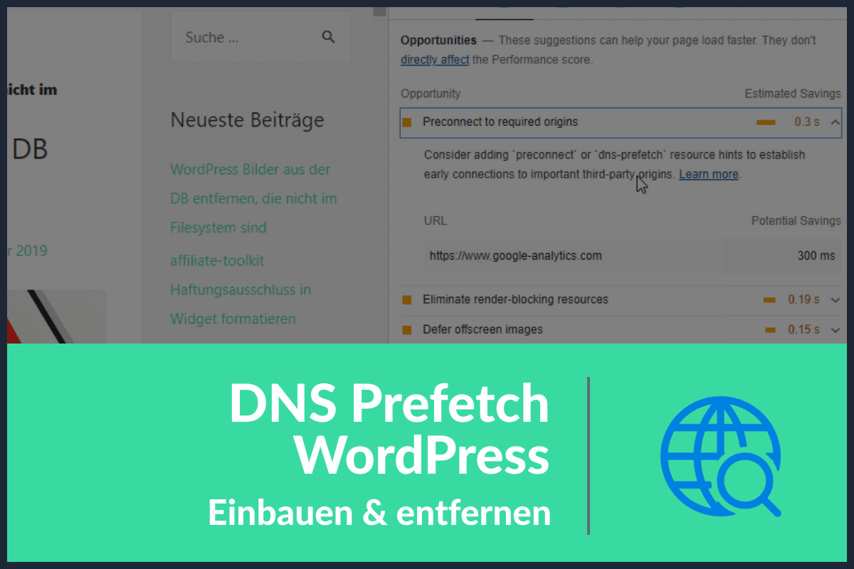 DNS Prefetch WordPress